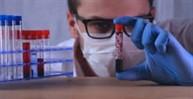Ciências Biomédicas/Biomedicina